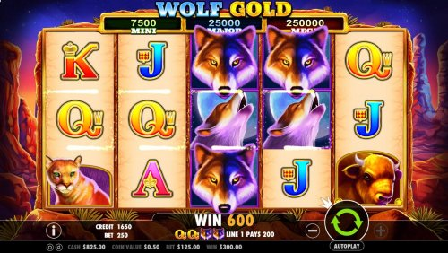Stacked wolf wild symbols trigger multiple winning paylines awarding player with a 600 coin jackpot. by Hotslot