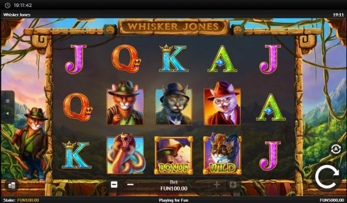 Whisker Jones screenshot
