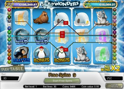 250 coin big win triggered by multiple winning paylines during the free spins feature by Hotslot