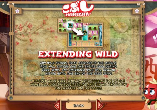extending wild rules by Hotslot
