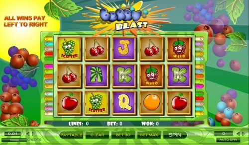 Images of Berry Blast
