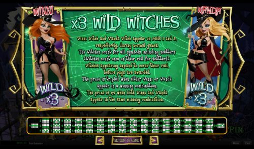 Hotslot - Wild Witches Rules