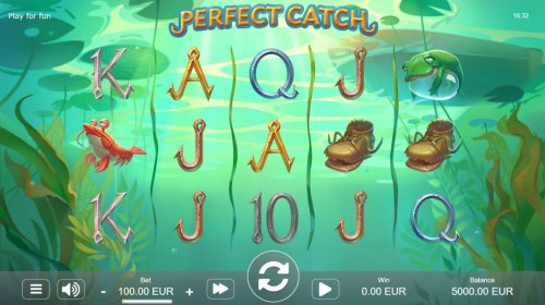 Images of Perfect Catch