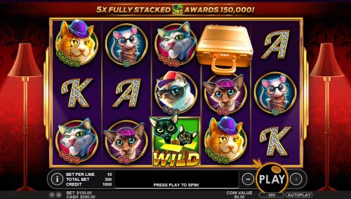 A frisky feline themed main game board featuring five reels and 30 paylines with a $25,000 max payout by Hotslot