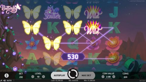 Images of Butterfly Staxx