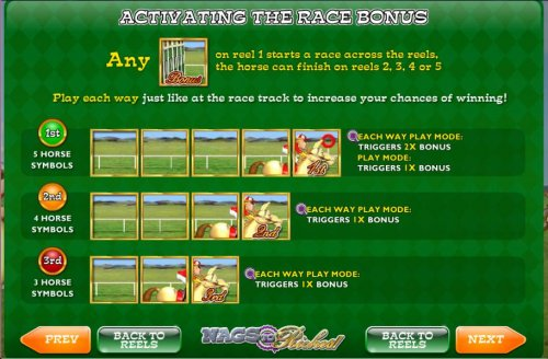 any bonus symbol on reel 1 starts a race across the reels, the horse can finish on reels 2, 3, 4 and 5 - Hotslot