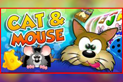 Cat n' Mouse